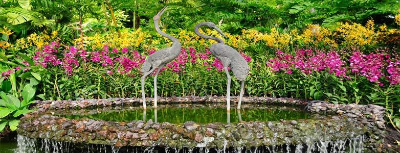 Voyage organis singapour depuis la tunisie for Jardin botanique singapour